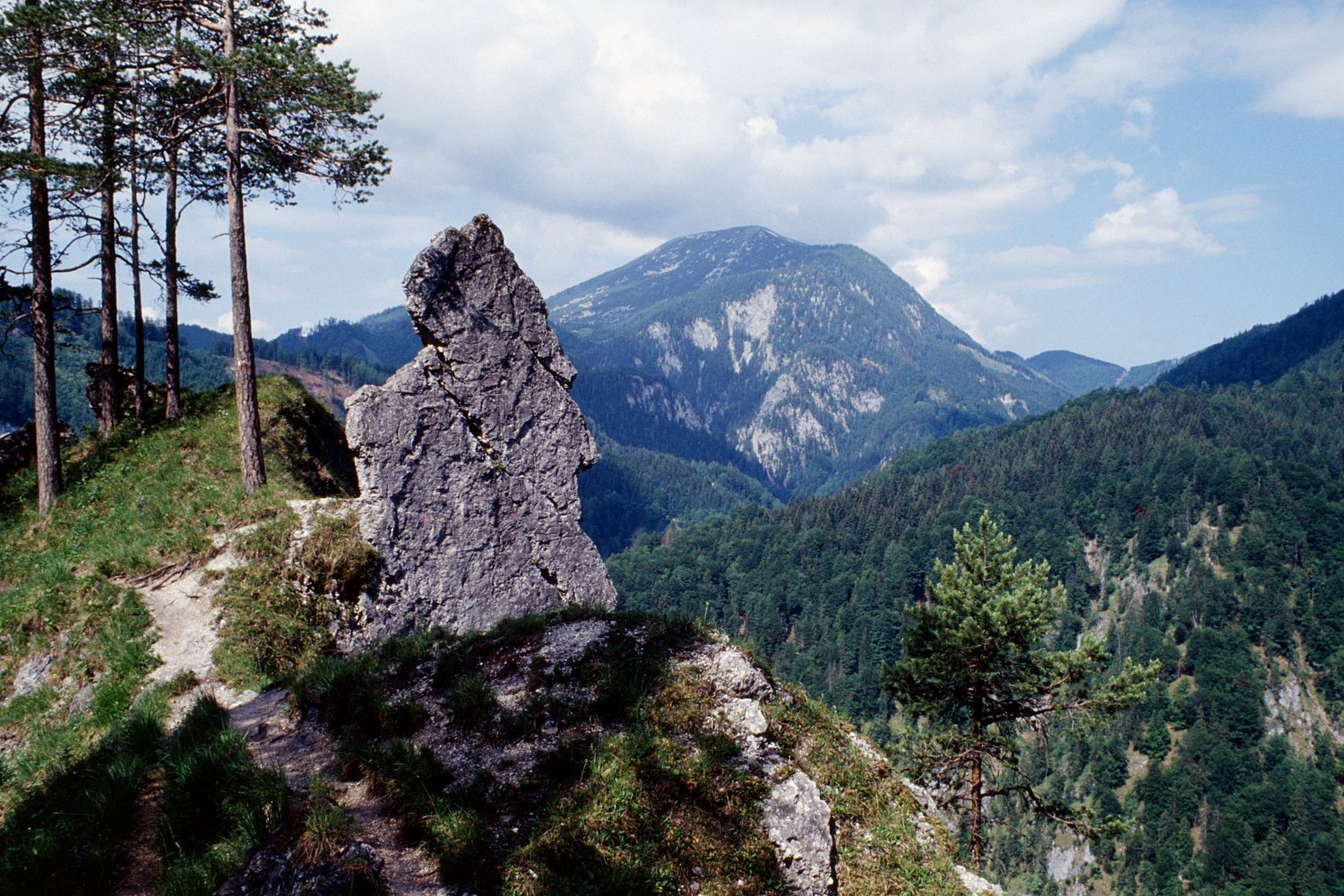 "Kalkalpen National Park in Austria – a wilderness core (Credit: ""Hintergebirge 01"" by Herbert Ortner, Überraschungsbilder - Self-published work by Herbert Ortner, transferred by Überraschungsbilder. Licensed under CC BY 3.0 via Wikimedia Commons)"