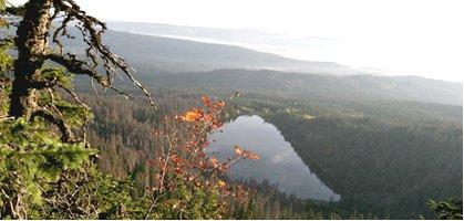 The 'Wild Heart of Europe', Sumava-Bayerisch Wald spans the Czech Bavarian border