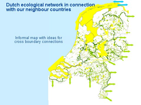 The Dutch Econet, international linkage of wild areas