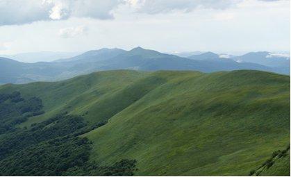 Wilderness in the Eastern Carpathians, Frans Schepers WWF Netherlands