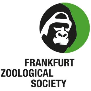 Frankfurt Zoological Society, partner of Wild Europe, taking a key role in conservation of old growth forests