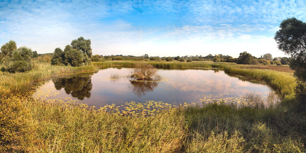 The Great Fen, restoring wetland in the East Anglia region of England (Photo credit: Thomas & Keith Sisman)