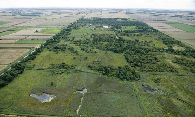 Aerial view of fenland landscape